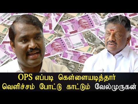 OPS எப்படி கொள்ளையடித்தார் வெளிச்சம் போட்டு காட்டும் வேல்முருகன் -  Tamil News Live