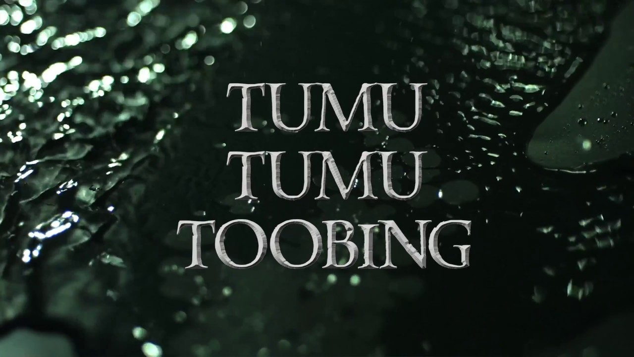 Waitomo Adventures Tumu Tumu Toobing (Black Water Rafting)