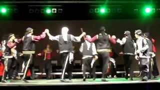 "Dance ensemble ""Zareef-al-tool dabka"", Palestine."