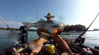 Kayak Striper from  Vibe Sea ghost 130