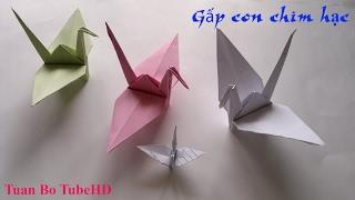 Hướng dẫn gấp hạc giấy (paper crane)