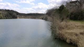 ブラックバス 兵庫県小野の池