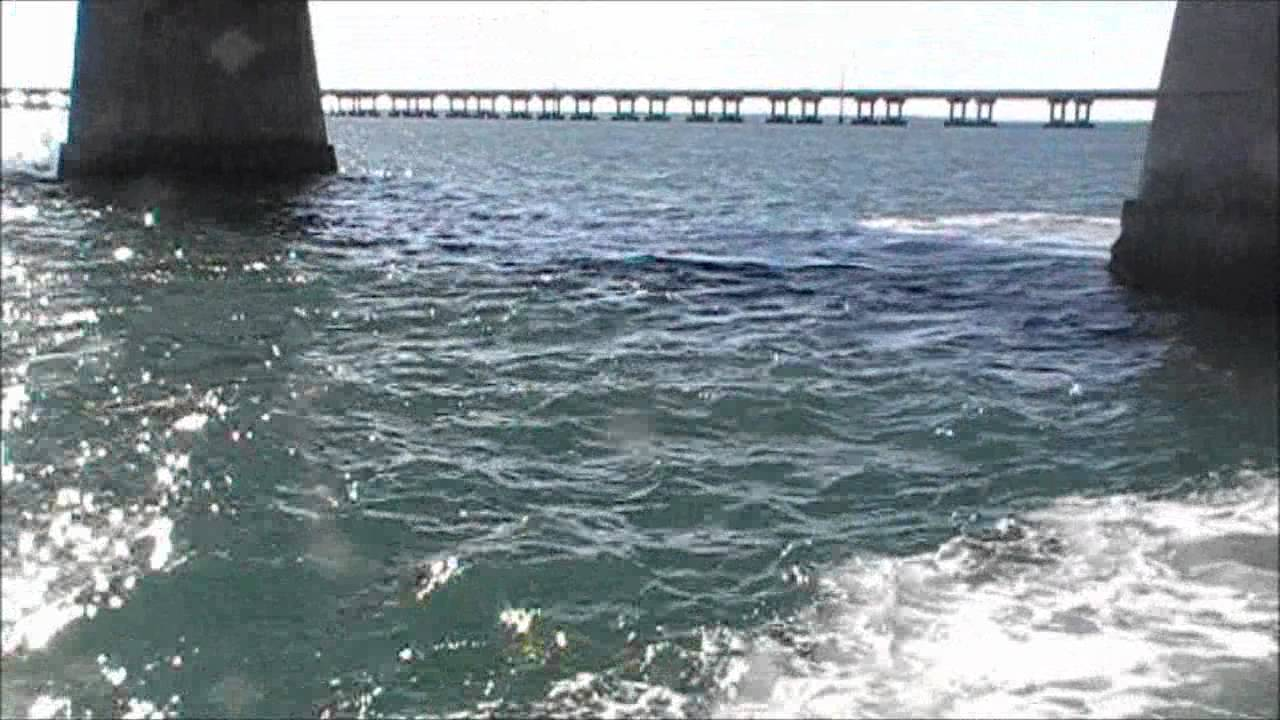 Tarpon fishing through and under bahia honda bridge with for Bahia honda fishing