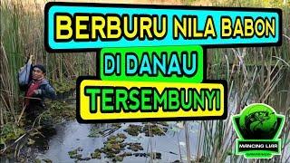 Serunya Berburu Ikan Nila Babon DI DANAU TERSEMBUNYI | Part 1