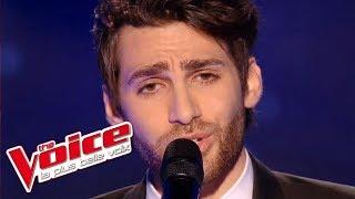 Christophe – Les Mots bleus | Lukas K. Abdul | The Voice France 2016 | Blind Audition