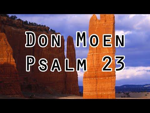 Don  Moen - Psalm 23 (Lyrics)