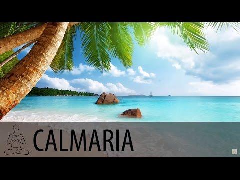 🎧 ONDAS DO MAR ~ Oceano, Mar, Ondas, Ilha Tropical ~ 8 horas de som ~ Relaxar, Dormir ~ ♫003