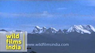 Himalayan peaks as seen from Paro