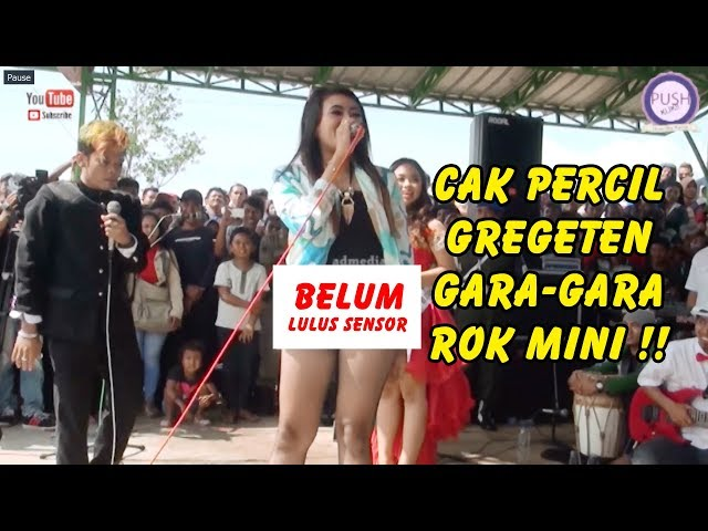 Cak Percil Gregeten Gak Kuat Nahan Anu Gara Gara Rok Mini Live Bukit Bonsai