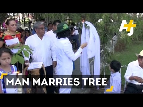Man Marries A Tree For The Eighth Time