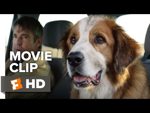 A Dog's Purpose Movie CLIP - Ethan Finds Bailey at the Pound (2017) - Josh Gad Movie