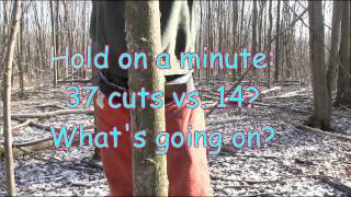 Why an angled back cut is dangerous and unecessary when hinge cutting a tree