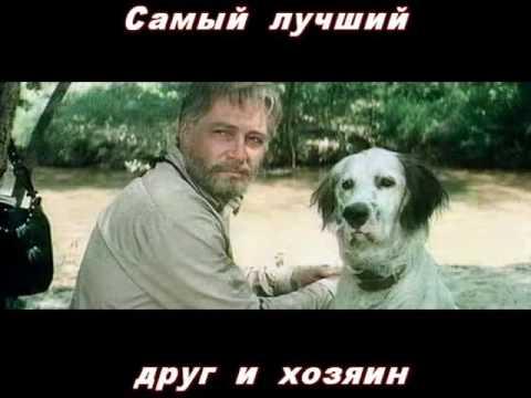 Буктрейлер по книге Белый Бим Черное ухо Куркина Александра АМГ