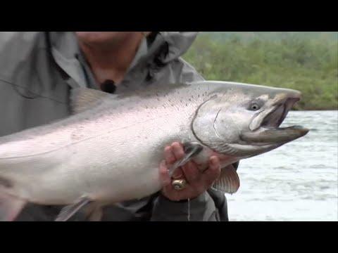 NFL's Larry Csonka Fishes Alaska's Goodnews River