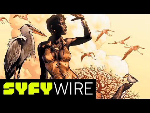 Vixen: 28 Days of Heroes (Black History Month) | SYFY WIRE