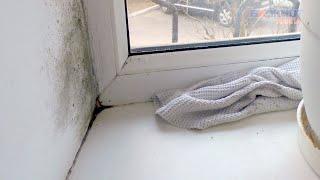 Жители дома на Ленина, 163 в Анапе страдают от холода и плесени в квартирах