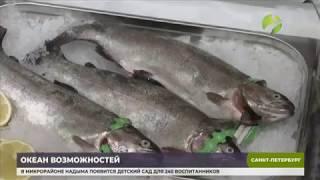 Смотреть видео В Санкт Петербурге начал работу  Международный рыбопромышленный форум онлайн