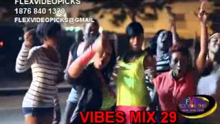 2013 REGGAE MIX DANCEHALL MUSIC VIDEO NEW RELEASE HITS DVD