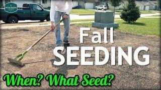 Fall Cool Season Lawn Seeding Tips // When? What Grass Seed?