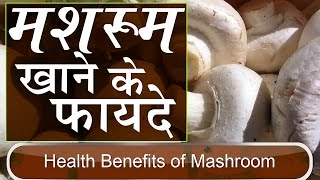 मशरूम खाने के फायदे | Health Benefits of Mushroom for Weight Loss & Bone in Hindi | Mushroom Benefit