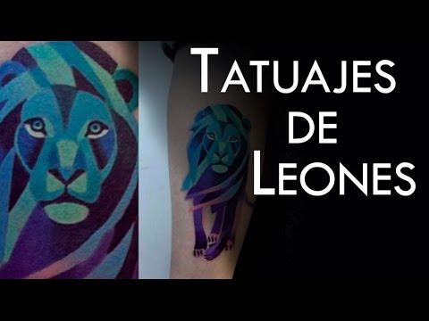 Los Leones Y Su Significado En Los Tatuajes Youtube