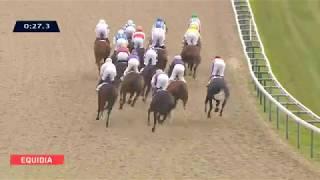 Vidéo de la course PMU PRIX DE LA PLACIERE