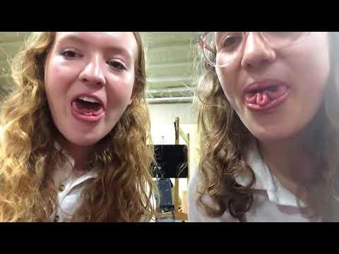 interlochen vlog 2018 part 1
