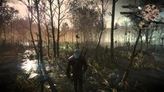 The Witcher 3: Wild Hunt 37-Minute Gameplay Demo