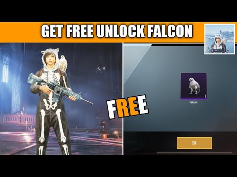Download How To Unlock Falcon Pubg Mobile !! Get Free To Unlock Falcon Companion In Pubg Mobile
