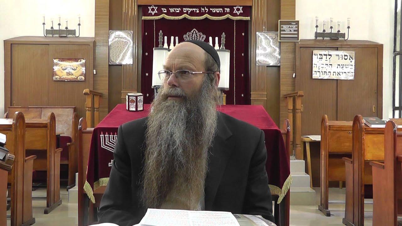 """הרב דוד דודקביץ' - לכבוד פורים תשע""""ג"""