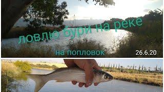 Одна удочка один попловок Рыбалка на реке в 5 минутах от дома 26 6 20 דייג בורי בנחל