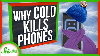 why-does-cold-weather-kill-your-phone