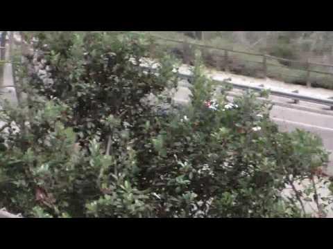 CVPD (Chula Vista PD) Rolling Code 3