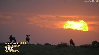 WE show off the cameras we use on safari in the Mara thumbnail