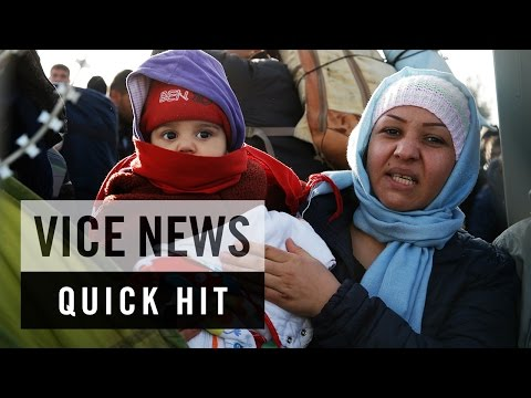 Greek Police Round Up Migrants on Macedonian Border: VICE News Quick Hit