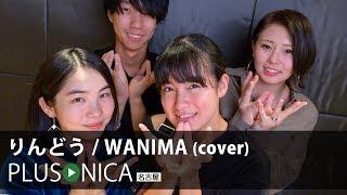 Download りんどう / WANIMA (cover)