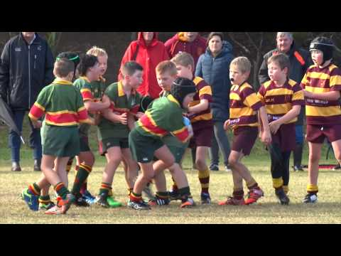 J5 Rugby Northcote Gold V Silverdale 27 June 2015