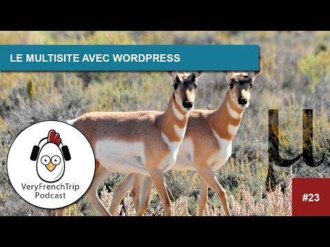 Podcast #23 : Le multisite avec WordPress