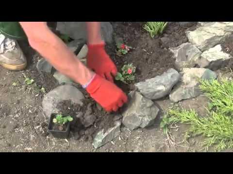 Cмотреть Альпийская горка своими руками  Как сделать горку самому