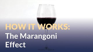 Marangoni Effect: Tears of Wine (and Rum)