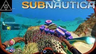 Ark Unterwasser Base Bauen Ps4
