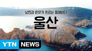 [YTN 구석구석 코리아] 울산편 / YTN (Yes! Top News)