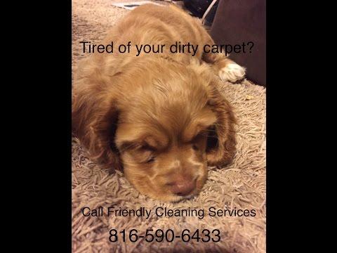 DIY pet odor removal tip