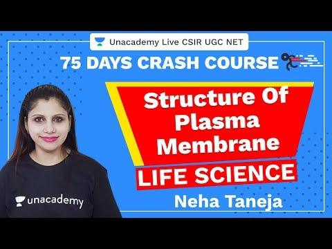 75 Days CSIR-UGC NET Crash Course | Structure Of Plasma Membrane | Unacademy Live CSIR UGC NET