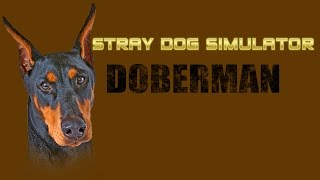 Stray Dog Simulator - Doberman - By Gluten Free Games -compatible With Iphone, Ipad, And Ipod Touch.