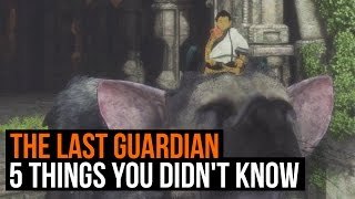 The Last Guardian - 5 things you didn't know