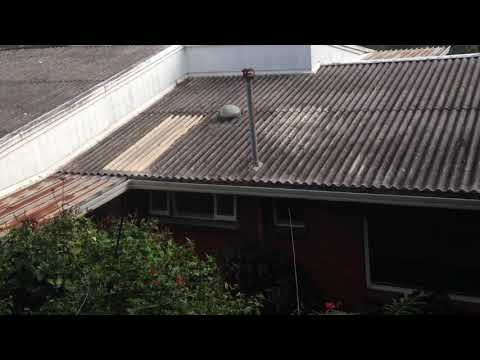 severe-vibrations-bathroom-windows-and-doors-open-potential-asbestos-dust-all-over-my-property-17.6