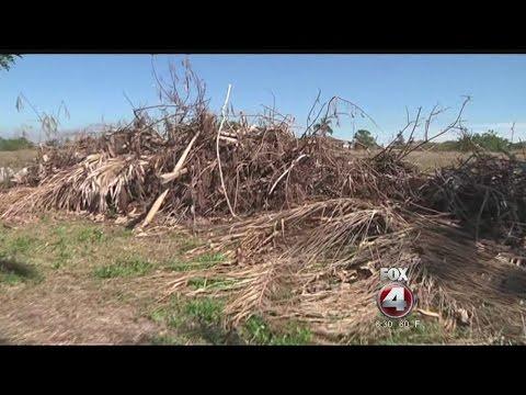 Waste Pro won't remove storm debris