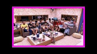 Resumo BBB: formação do oitavo Paredão marca a noite dos brothers| BBB18 Notícias 24 horas ao vivo