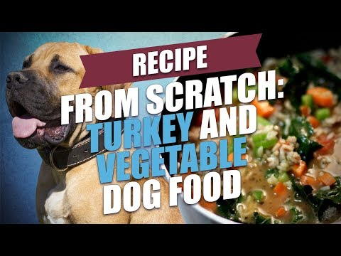 Turkey And Vegetable Dog Food Recipe (Simple And Healthy)